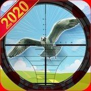 猎鸟猎人v1.0