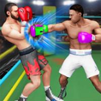射击拳击v1.0