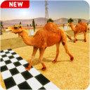 骆驼跑酷模拟器
