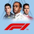 F1 2020涓����磋В��