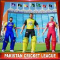 2020年巴基斯坦板球杯苹果版