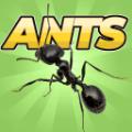 口袋螞蟻模擬器破解版v0.017