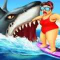 海洋的杀手鲨